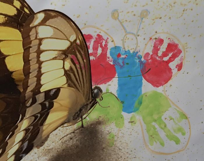 """Kreatives Gestalten: """"Schmetterling aus Hand und Fuss"""""""